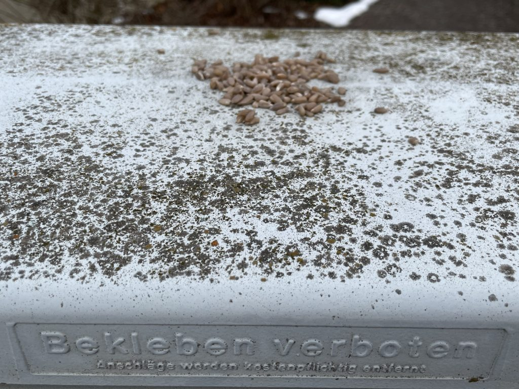 grauer Postkasten mit Vogelfutter