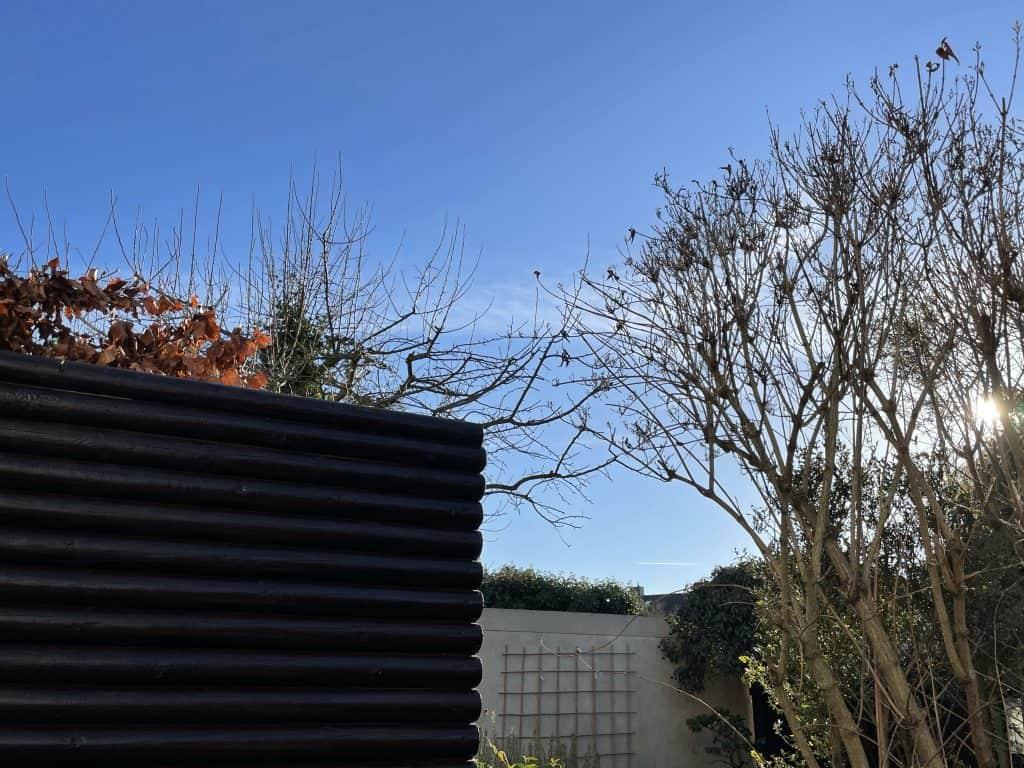 Blick im Garten