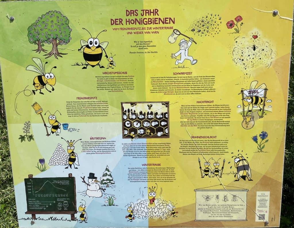Bienenübersichtserklärtafel