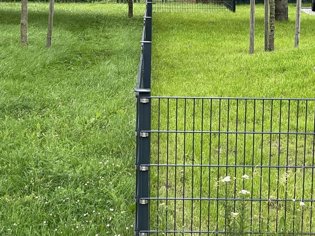 zwei Rasenflächen nebeneinander